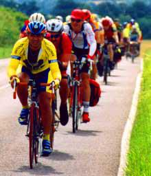Riders in Harlow 2001